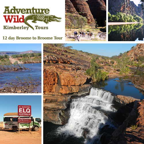 Adventure Wild Tours special offer
